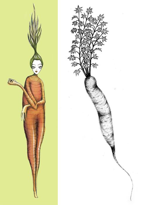 DUette_carrot