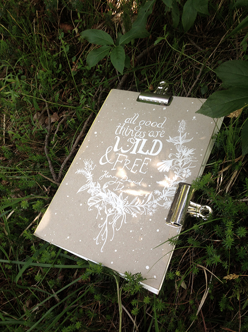 WildBook_Outside_BLOG